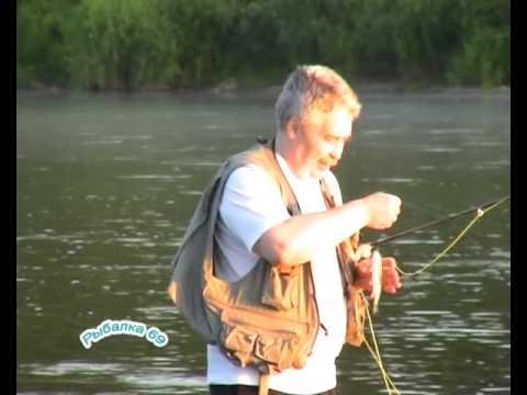 летняя рыбалка на волге в нижегородской области