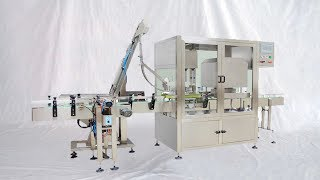 Glass jars vacuum capping machine rotary bottles sealing capper equipment sellador de tarros