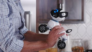 Meet CHiP: The World's First Lovable Robot Dog