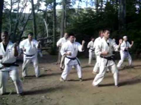 SHINSHINKAN ISSHIN RYU KARATE CAMP FEB 2010 ( DEMO 2 / VIDEO ) Image 1