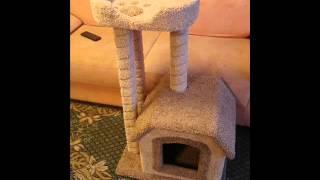 Как сделать когтеточку для кота своими руками в домашних условиях видео
