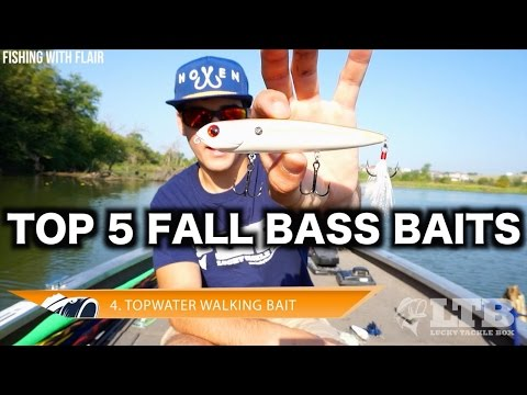 Top 5 summer bass fishing lures pond lake tips how for Best bait for pond fishing