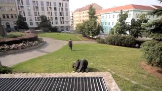 Epic Parkour Chase In Europe