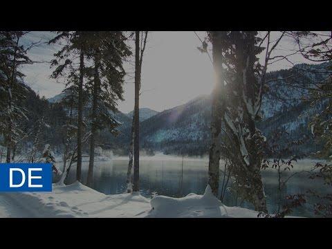 Webasto Standheizungen - Einfach den Winter genießen!