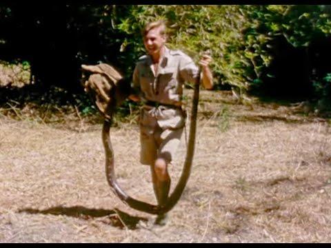 Young Attenborough Catches A Python - #Attenborough90 - BBC