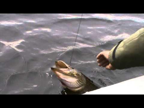 рыбалка в радужном хмао