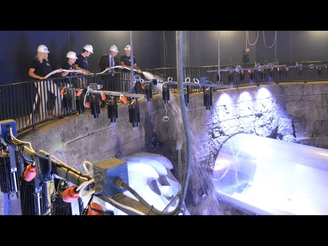 SEA LIFE Orlando Aquarium Interview and First Look as Atlantic Water Tank is Filled
