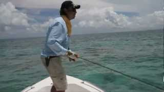 Barry Attack SFA SA fly fishing film competition 2012 best clip winner