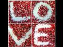 Crvena Jabuka - Tamo Gdje Ljubav Pocinje