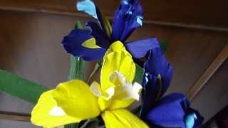 How to make Paper flowers Iris (Flower # 8)