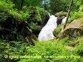 В край водоспадів, на полонину Руна