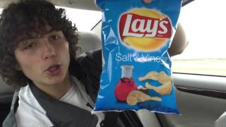 Crazy Food Reviews! Salt and Vinegar Lays Chips!