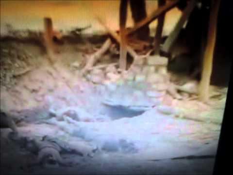 Tamil Tigers War Crimes Video 2 - Sri Lanka