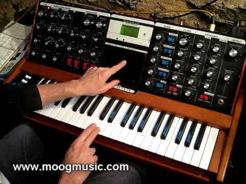 Moog - Voyager Touch Surface CV Control of two Moogerfoogers