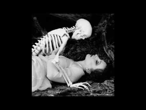 La necrofilia