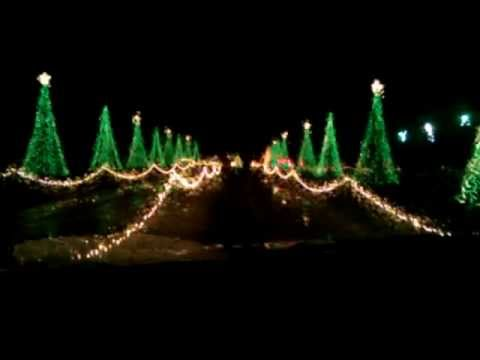 Santa land dancing trees