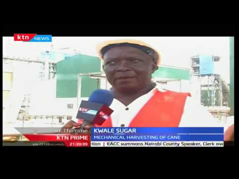 KTN Prime: Kiscol sugar company leveraging on technology, 4/10/2016