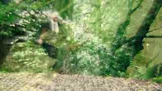 WICKED SNAKES - Wonder & Delirium
