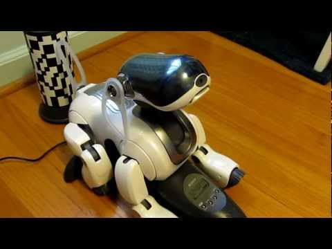 Cute and Smart Sony Robot Dog Aibo ERS-7.MP4