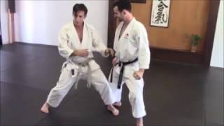 Low kick defense - Rick Hotton Sensei