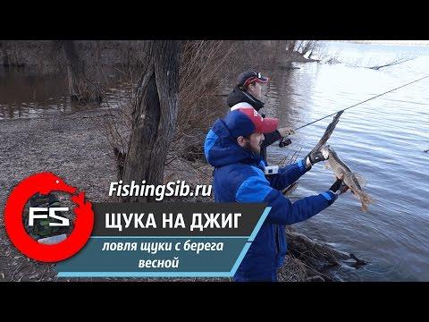 ловля на джиг с берега щуки