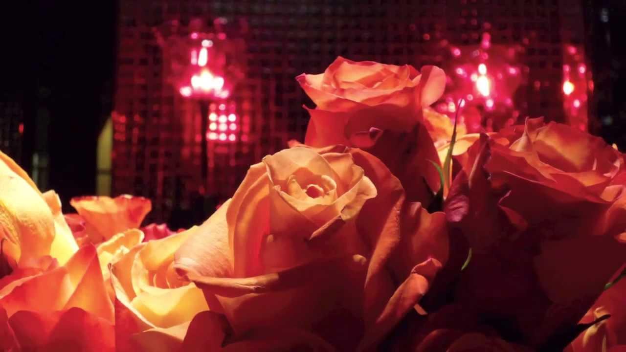 Hotel Costes Paris Roses