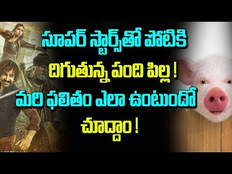 Ravi Babu Adugu Compete Star Movies l Tollywood News l Telugu Boxoffice