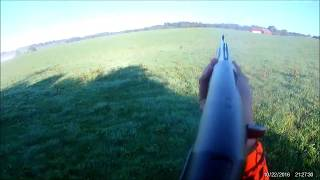 ouverture chasse 2018/2019 SANGLIER