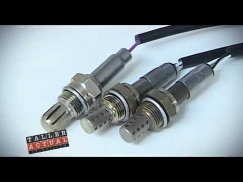 Fispa: capacitación sobre características y buen uso de Sensores de Oxígeno