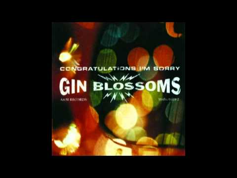 Gin Blossoms - I Can