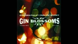 Watch Gin Blossoms I Cant Figure You Out video