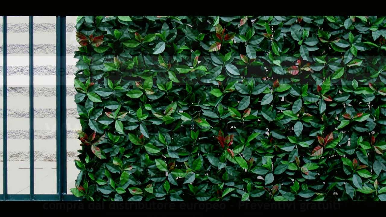 Siepe sempreverde finta artificiale vantaggi consigli ed for Siepe finta per terrazzo