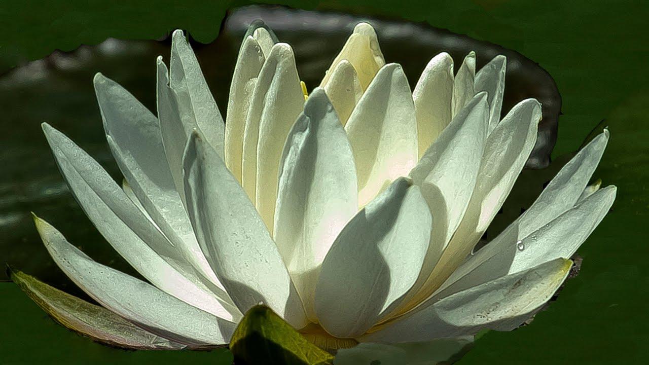 Spiritual Nature Pictures Nature Spirituality at