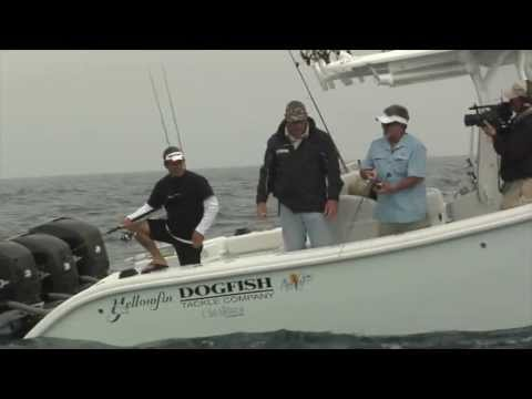 REEL ANIMALS FISHING • Hogfish (February / Treasure Island, Florida)