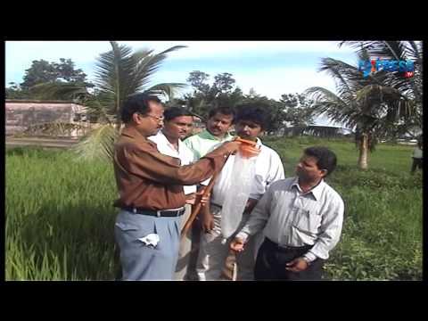 Special program on farming - Paadi Pantalu