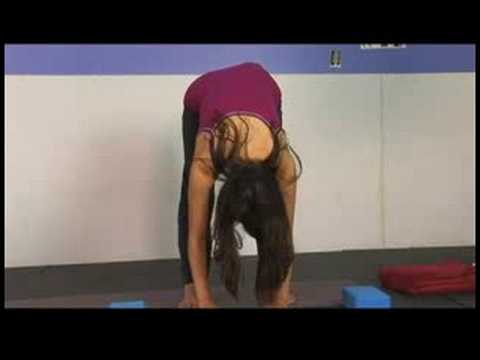 Standing Yoga Poses & Stretches : Forward Fold Yoga Pose