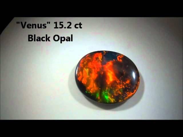 "15.2 ct Black Opal ""Venus"" at Kohala Goldsmiths"