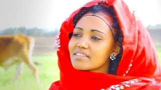 Gimja Bihonegn - Kikteleka Do / New EthiopianTigrigna Music (Official Music Video)