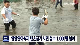 양양연어축제 맨손잡기, 사전접수 1,000명 넘어