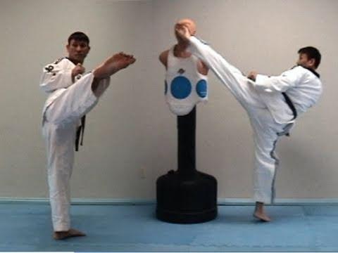 Kick Techniques Taekwondo Taekwondo Round House Kick