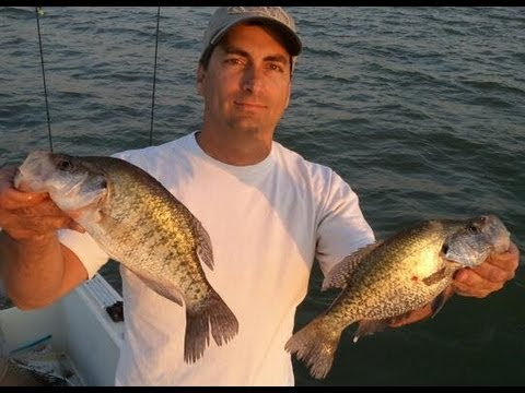 How to jig for crappie youtube for Crappie fishing with minnows