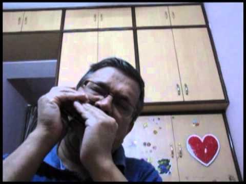 Jane Kahan Gaye Woh Din on Harmonica - Shivranjani