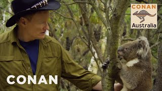 Download Song Conan Encounters Australian Wildlife - CONAN on TBS Free StafaMp3