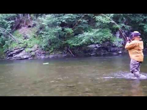 как ловят на сахалине