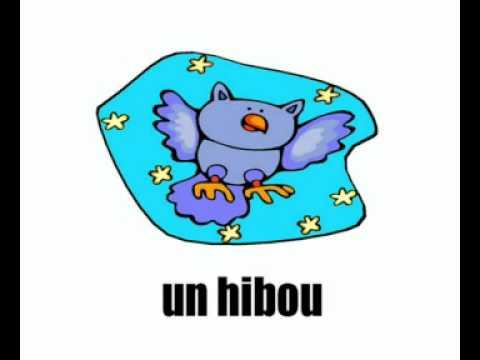 Lezione di francese = gli animali 2