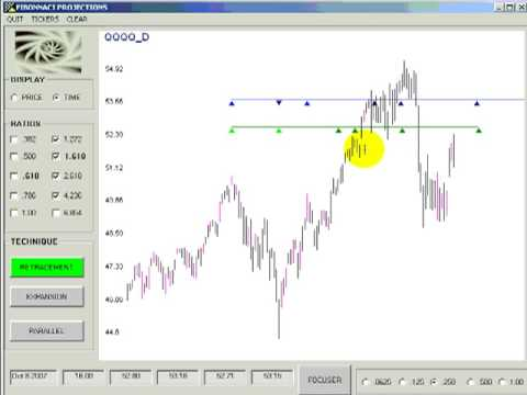 Forex trading projections