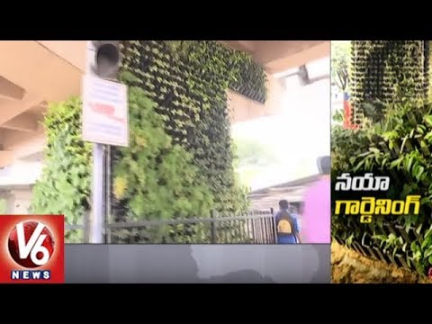 Vertical Gardens On Metro Pillars Attracts Hyderabad City People | Special Story | V6 News