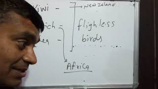 General science bird