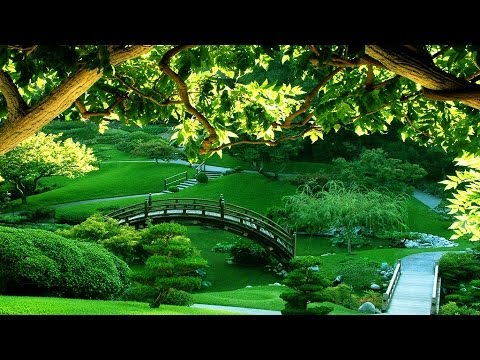 3 HOURS Meditation Relaxing music | Bamboo Flute | - Background...