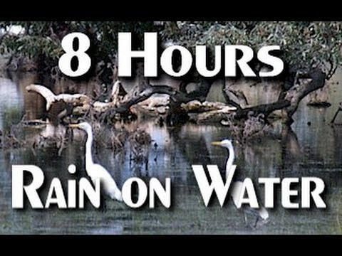Relaxing Sound Of Rain On Water - 8 Hrs Long video